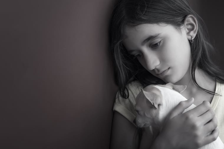 50 Pet Loss Quotes To Get You Through This Emotional Time