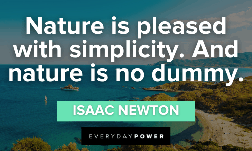 Forest Quotes about simplicity