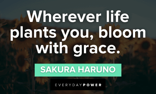 Sunflower quotes about grace