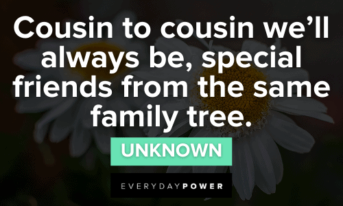 Cousin Quotes about friendship