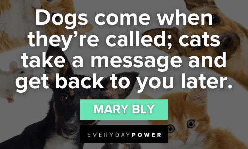 Pet Quotes about dogs