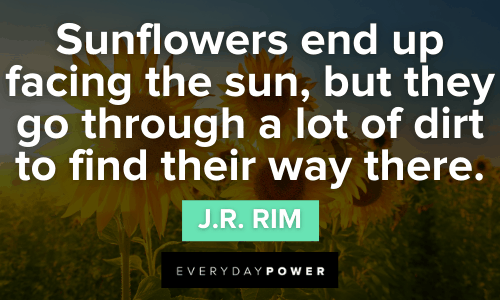 Inspirational Sunflower Quotes to Learn From