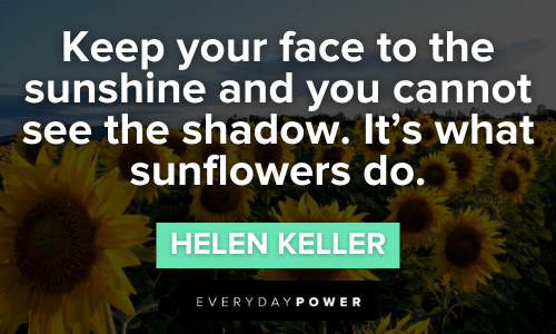 Sunflower quotes to keep your face to the sunshine