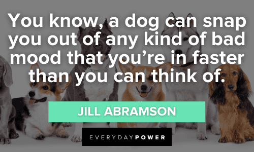 Dog Quotes to lift your mood