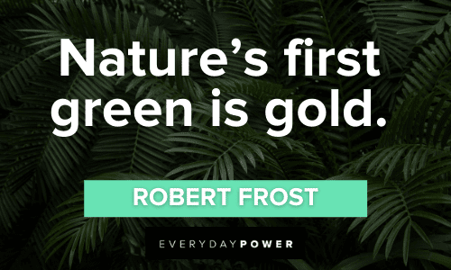 Green Quotes about nature