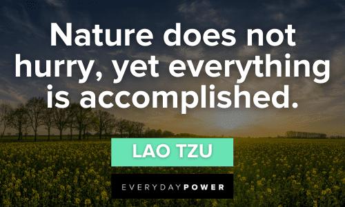 Lao Tzu quotes on nature